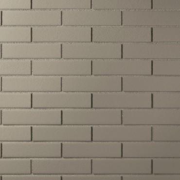 Campione CHROMA liscio color grigio chiaro